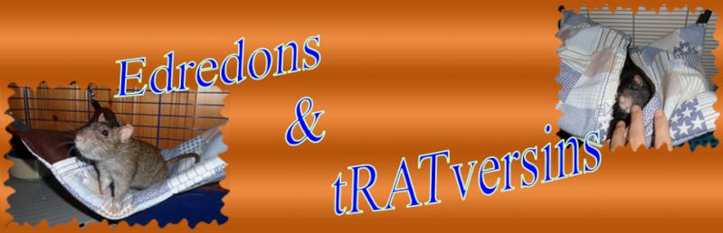 [VDS/ACC] Edredons et tRATversins Cid_7e10
