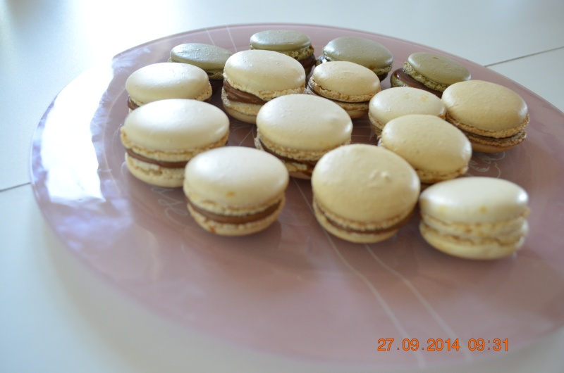 Macarons - Page 41 _dsc0610