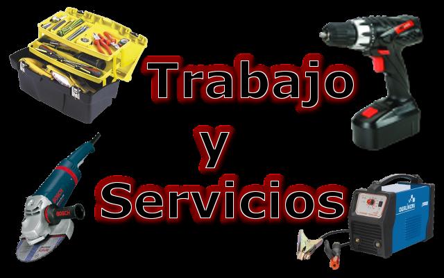 Trabajo y Servicios Logo11