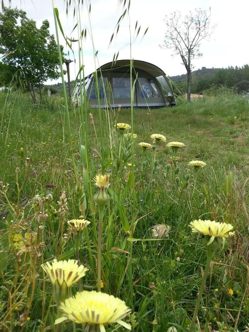 Camping Municipal au Lac du Salagou à Paques 2013-011