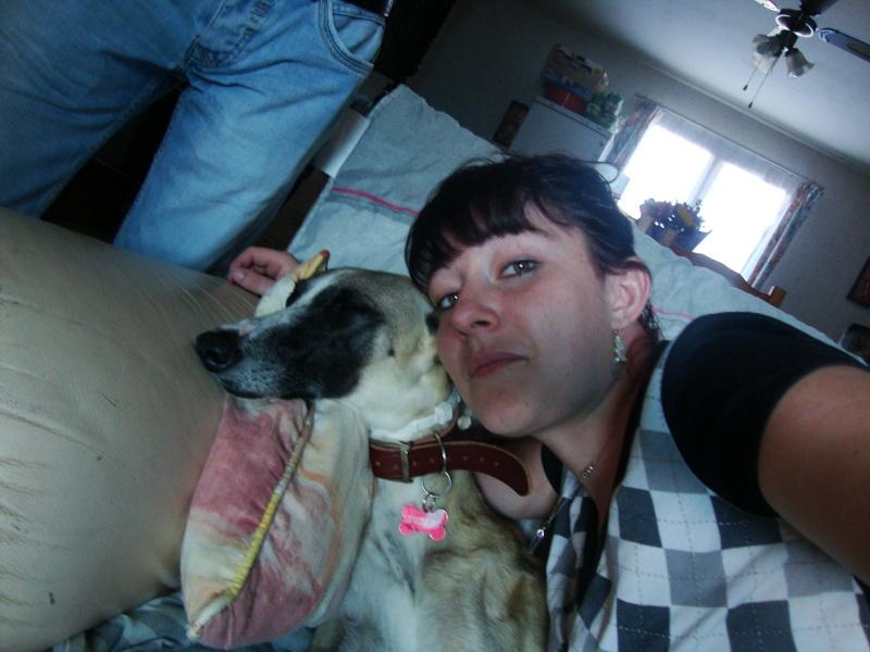 Perla , (squelettique) magnifique galga Scooby France   ADOPTEE  - Page 7 Dsc05240