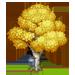 Vous cherchez un arbre ? Venez cliquer ici !!! Bircht10