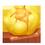 Mare colvert et Mare canard gris =>  Oeuf de Canne Bubble22