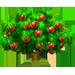 Vous cherchez un arbre ? Venez cliquer ici !!! Nectar17