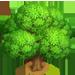 Vous cherchez un arbre ? Venez cliquer ici !!! Oaktre11