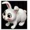 Vous cherchez un animal ? Venez cliquer ici ! Rabbit12