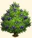 Vous cherchez un arbre ? Venez cliquer ici !!! Sans1071