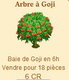 Arbre à Goji  Sans1255