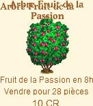 Arbre fruit de la passion => Fruit de la Passion Sans_332