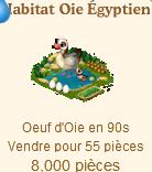 Habitat Oie Égyptienne / Oie de Chine => Oeuf d'Oie Sans_508