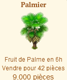 Le Palmier => Fruit de Palme Sans_541