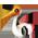 Jabiru d'Asie / Cigogne => Plume de Cigogne Storkf10
