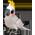 Habitat Perroquet Blanc => Plume de Perroquet Blanc Whitep12