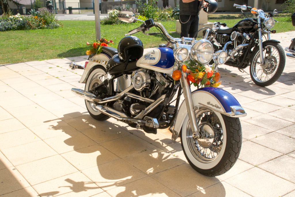 SOFTAIL HERITAGE ou DELUXE - Page 2 _dsc0016