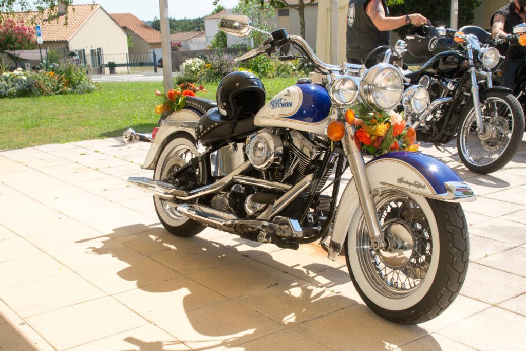 Combien de Softail sur le forum Passion-Harley - Page 15 _dsc0017