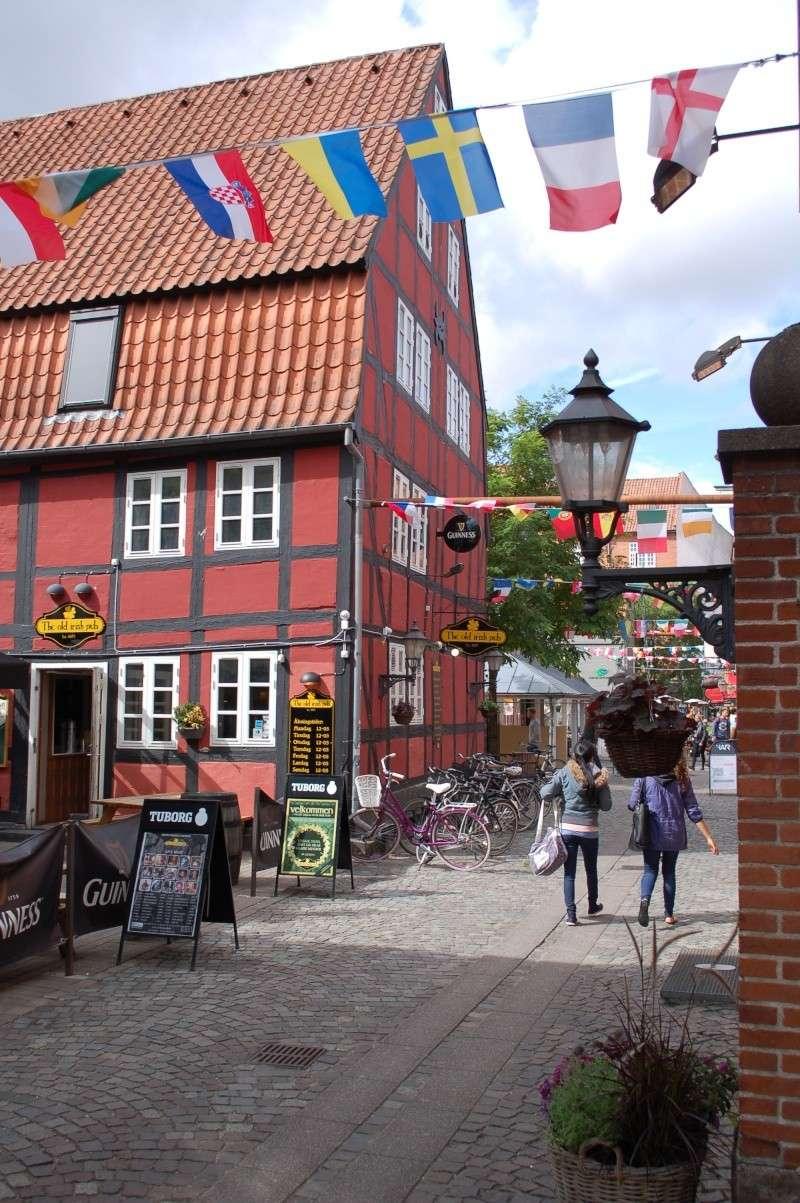 Danemark - Août 2014 Dsc_2311