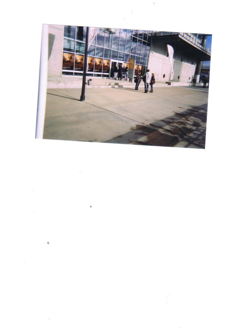 Lascaux - Exposition internationale (Bordeaux) Cci00010