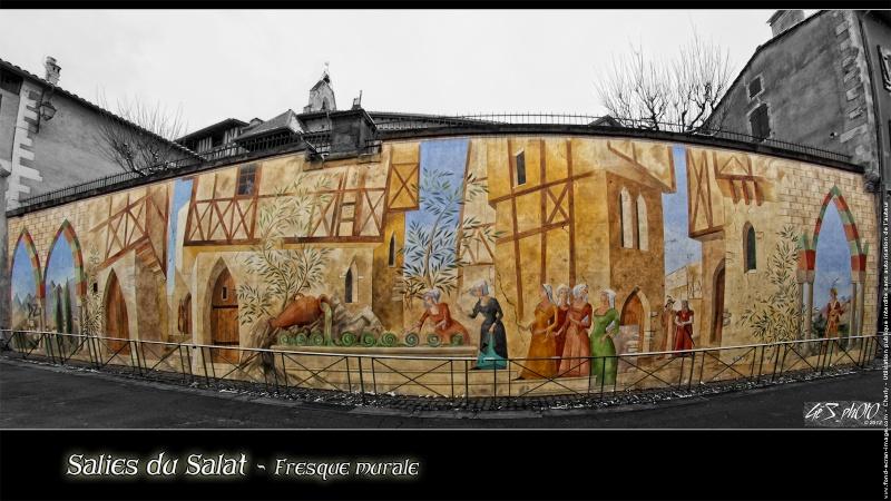 STREET VIEW : les fresques murales en France - Page 14 Salies11