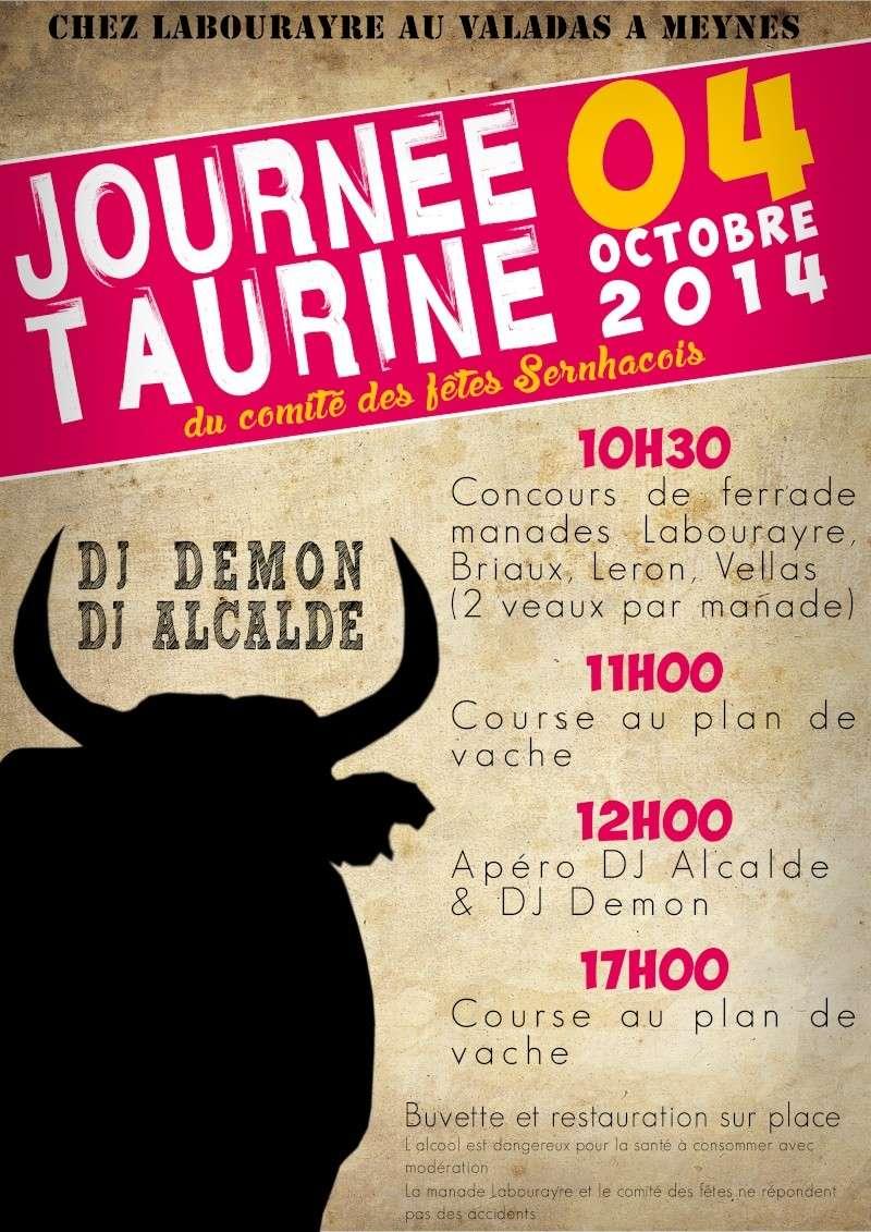 Journée taurine du comité des fêtes Sernhacois le 04/10/14 Journy10