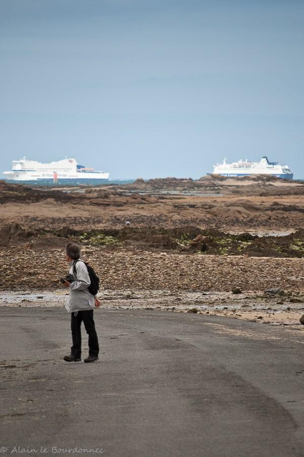 Sur l'île Callot  _dsc6613