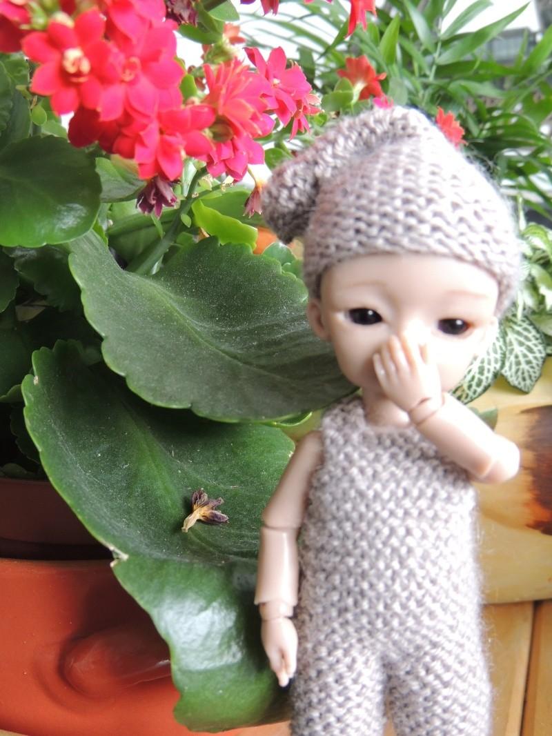 bébés hujoo et petites fairy : nouvelles photos - Page 2 Dscn2011