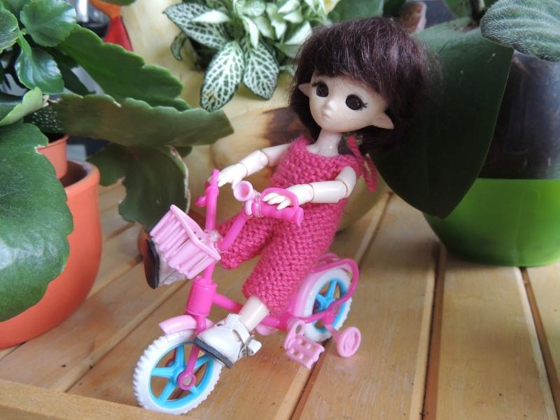 bébés hujoo et petites fairy : nouvelles photos - Page 2 Dscn2014