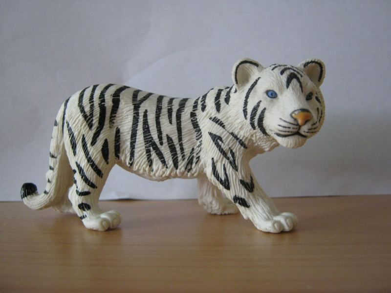 My new models of the last weeks - Page 6 Tiger_10
