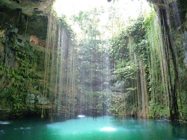 Les cenotes 410