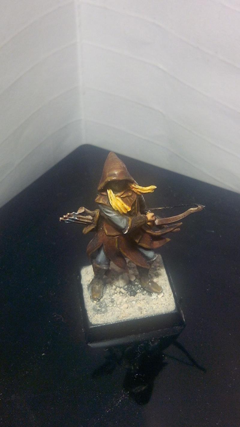 Les Elfes de Mirkwood de Sarn Img_2054