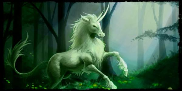 Les Sylvestres Licorn10