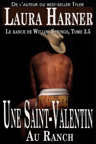 Tag cowboy sur Mix de Plaisirs 10431510