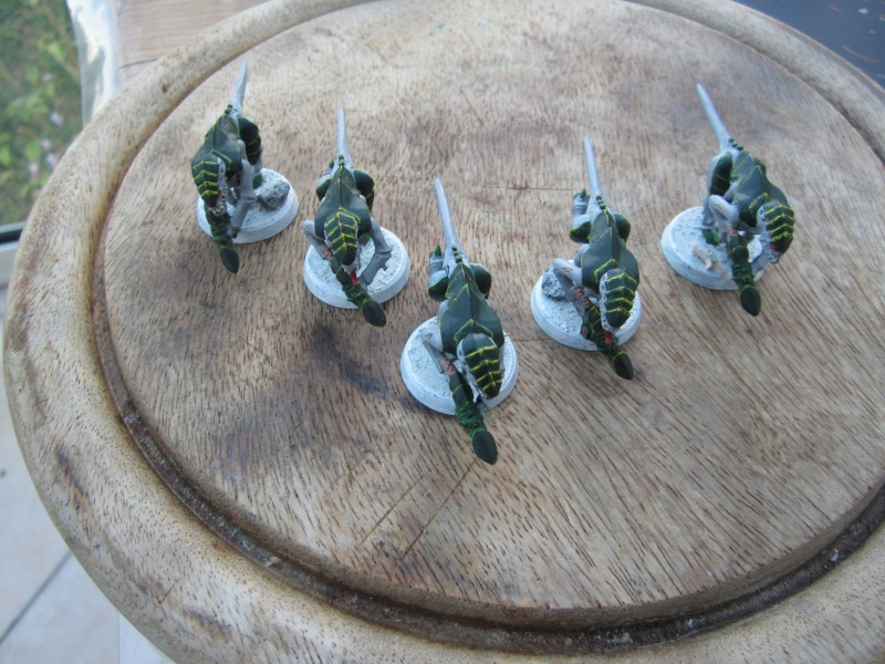 Flotte ruche Cerberus_Lamenuit T_00211