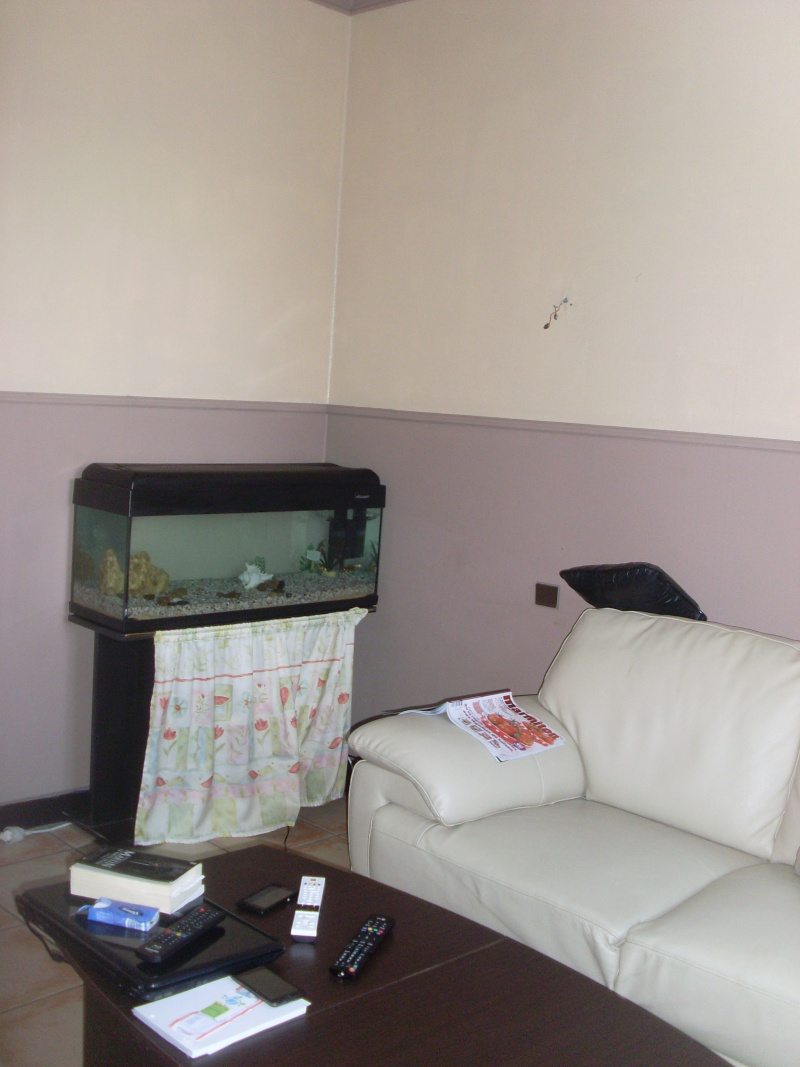 Déco maison:salle à manger/ salon/ couloir Sl375711