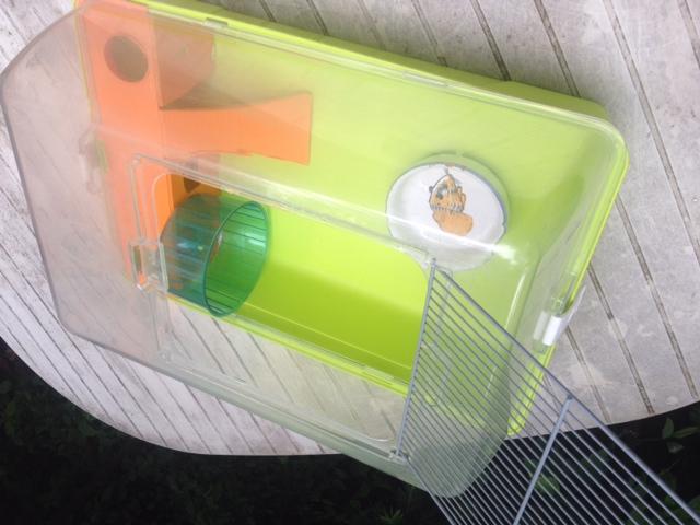 A vendre Cage plexi Photo_15