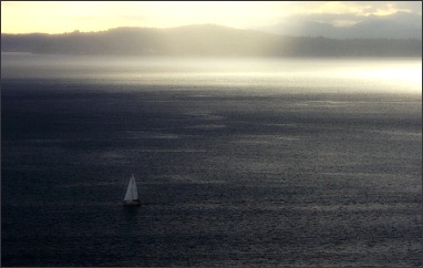 Leia D'al Angelo, pirate des Terres 53965110