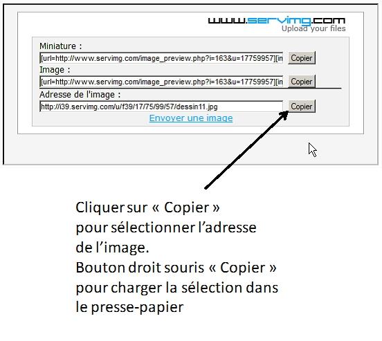 2013: le 23/08 à 22h45/23h00 - Disques lumineux - Pornic - Loire-Atlantique (dép.44) 312