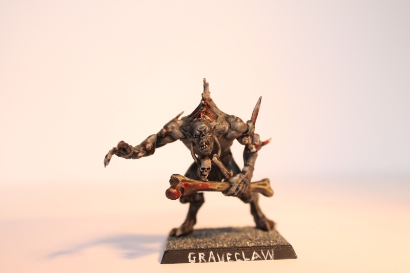 undead - MasterSpark's Undead warband Ogre110