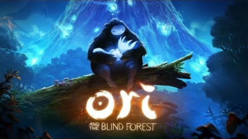 Ori and the blind Forest Extern10