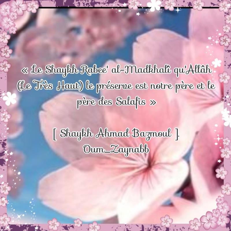 Montage d'Oum Zaynab n°31 10511110