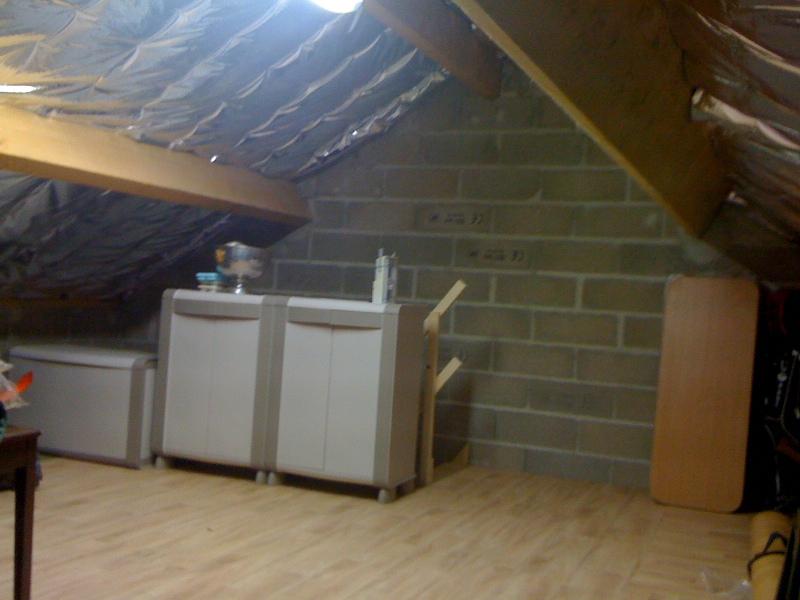 Pan sous-toit (madriers horizontaux) Dalle10