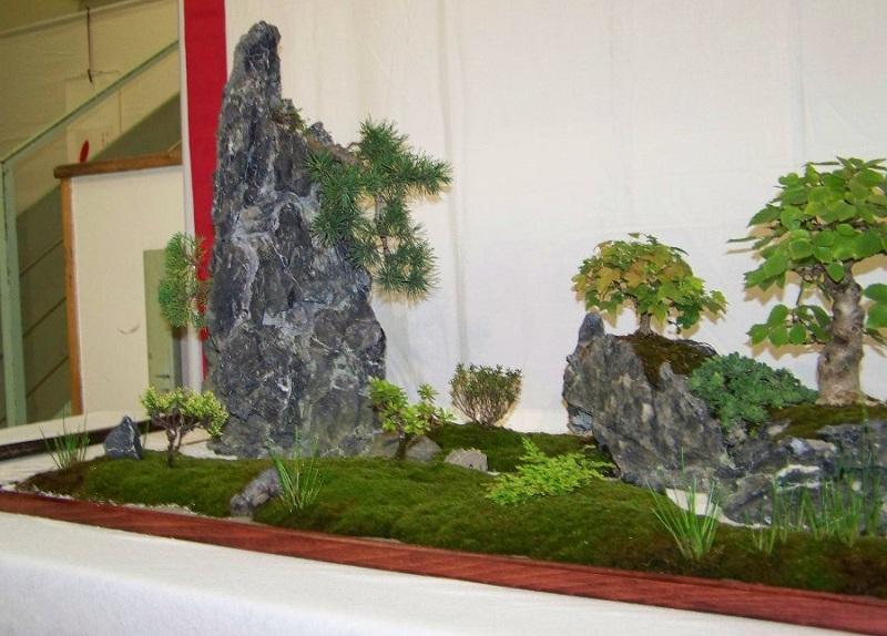 Tray landscape (giant saikei) Bon1-310
