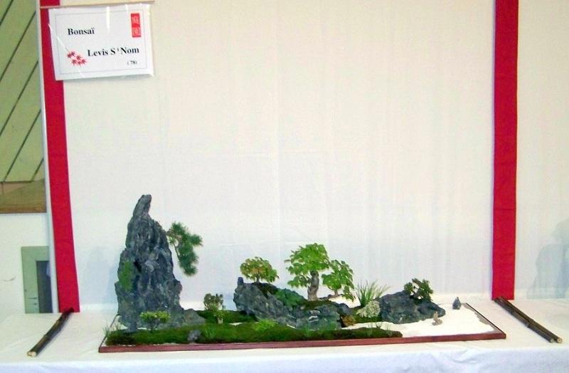 Tray landscape (giant saikei) Bonkey10
