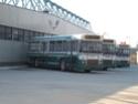 Autobuzele Express - Saviem 118