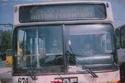 Autobuzele DAF ale RATB 310