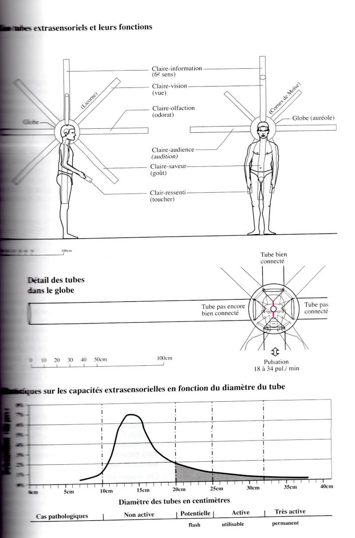 Exercices d'ancrage et de centrage Img00410