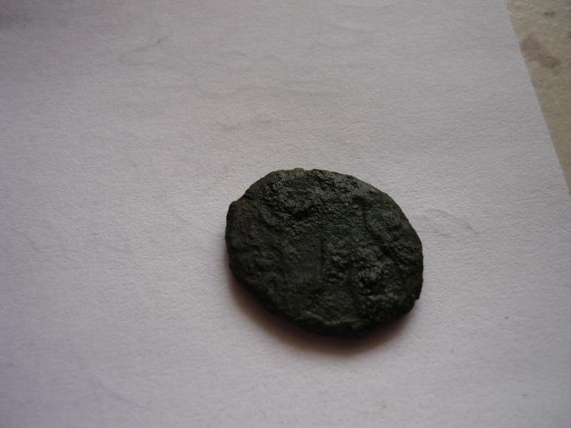 Petite romaine P1020713