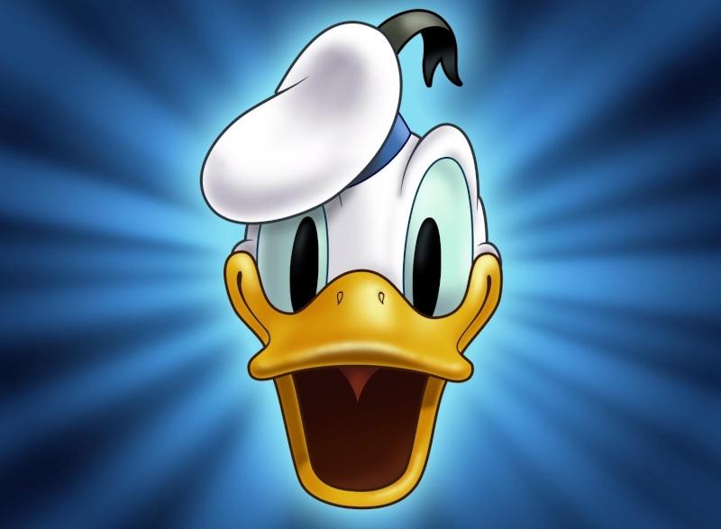Mon dessin (Donald) Donald11