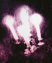 QUIZZ Pochettes [Pop / Rock / Metal / Folk] 3310