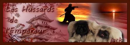 Le prix du chien LOF Evelyn10