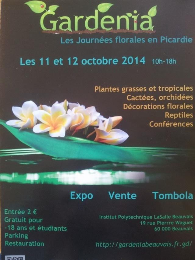 Expo Gardenia : Les journées florales en picardie (60) 10153910